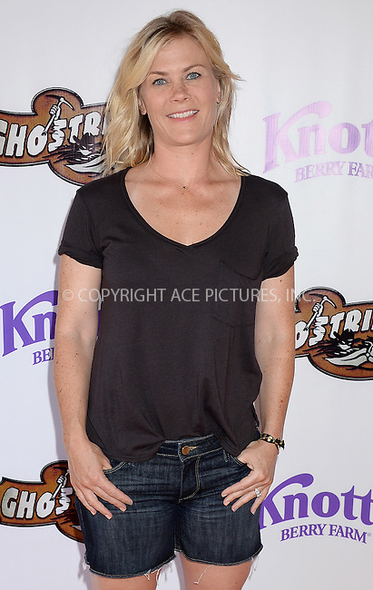 WWW.ACEPIXS.COM<br /> <br /> June 4 2016, LA<br /> <br /> Alison Sweeney attends the GhostRider reopening at Knott's Berry Farm on June 4, 2016 in Buena Park, California.<br /> <br /> <br /> By Line: Solar/ACE Pictures<br /> <br /> <br /> ACE Pictures, Inc.<br /> tel: 646 769 0430<br /> Email: info@acepixs.com<br /> www.acepixs.com