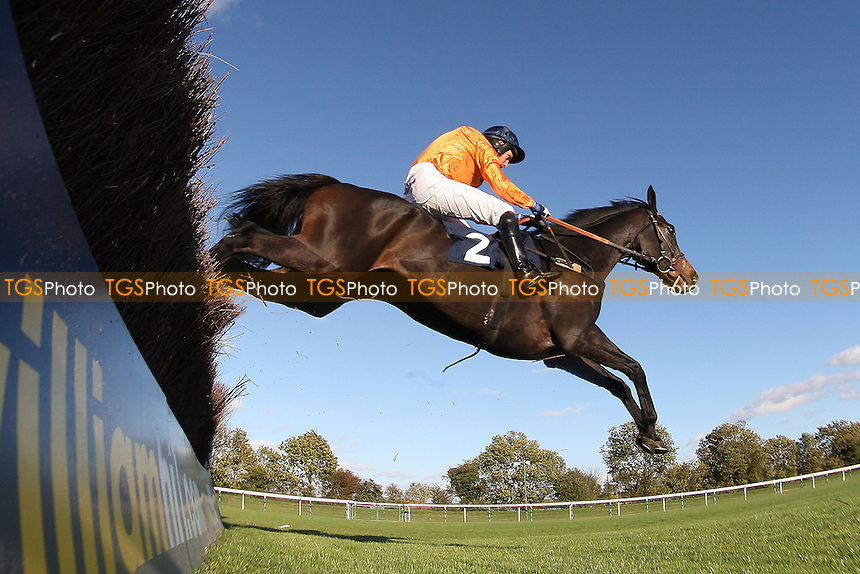 Race winner Hildisvini ridden by Noel Fehily jumps the last in the SWI Ltd Electrical Contractors Beginners Chase - Horse Racing at Huntingdon Racecourse, Cambridgeshire - 16/10/12 - MANDATORY CREDIT: Gavin Ellis/TGSPHOTO - Self billing applies where appropriate - 0845 094 6026 - contact@tgsphoto.co.uk - NO UNPAID USE