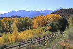 Fence with Cottonwood trees and the Sneffels Range, autumn, Colorado John offers autumn photo tours throughout Colorado.