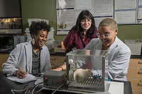 Associate professor of psychology Gwen Lupfer checks on the progress of psychology majors Cha'ron McCray, left, and Hannah Pryce, right, as they train a wistar rat using a Skinner box during Lupfer's Psychology of Learning Laboratory in UAA's Natural Sciences Building.