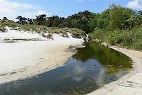 Strand von Balka auf der Insel Bornholm, D&auml;nemark, Europa<br /> beach at Balka, Isle of Bornholm Denmark