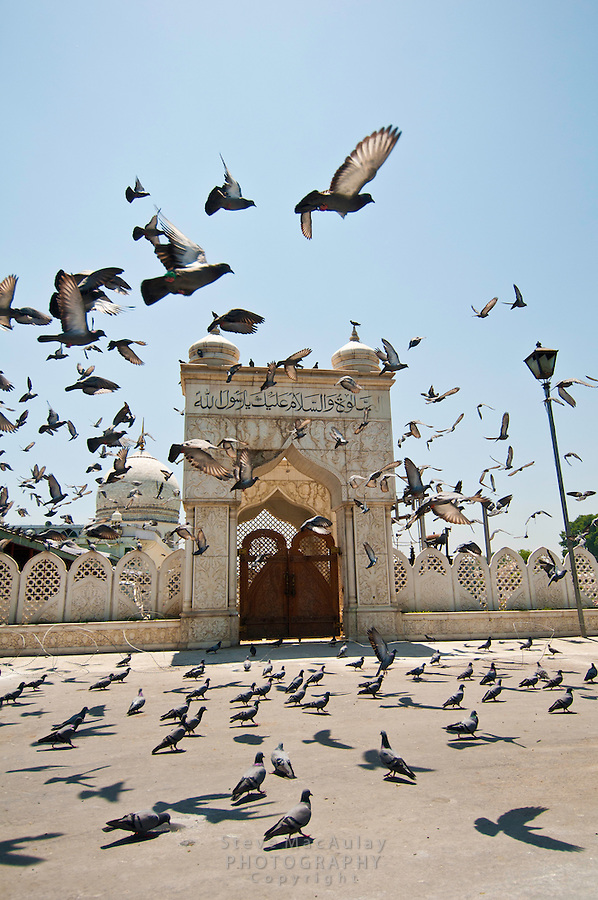 Pigeons flying around entrance gate to Hazratbal Mosque, Srinagar, Kashmir, India.