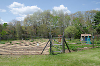 Newly planted spring in the community garden, Yarmouth Maine, USA