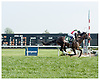 Brilliant winning grade 3 The Kent Stakes at Delaware Park on 9/9/06