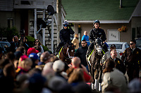 LOUISVILLE, KY - MAY 03: The Todd Fletcher runners, Tapwrit (front) and Patch walk to the track as fans look on at Churchill Downs on May 03, 2017 in Louisville, Kentucky. (Photo by Alex Evers/Eclipse Sportswire/Getty Images)