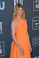 SANTA MONICA, USA. January 12, 2020: Laura Dern at the 25th Annual Critics' Choice Awards at the Barker Hangar, Santa Monica.<br /> Picture: Paul Smith/Featureflash