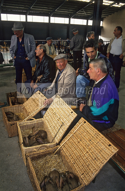 Europe/France/Midi-Pyrénées/81/Tarn/Réalmont: Sur le marché paysan - fermiers vendant leurs lapins<br /> PHOTO D'ARCHIVES // ARCHIVAL IMAGES<br /> FRANCE 1990
