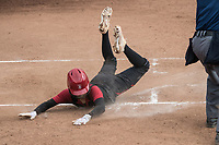 Stanford Softball vs North Dakota State, March 3, 2019