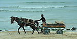 A man guides a horse-drawn cart, filled with rubble from buildings demolished by the Israeli military, along a beach in Gaza. The rubble is used in new construction.
