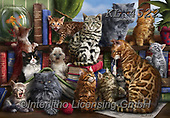 REALISTIC ANIMALS, REALISTISCHE TIERE, ANIMALES REALISTICOS, paintings+++++,KL4522,#a#, EVERYDAY,cats ,puzzles
