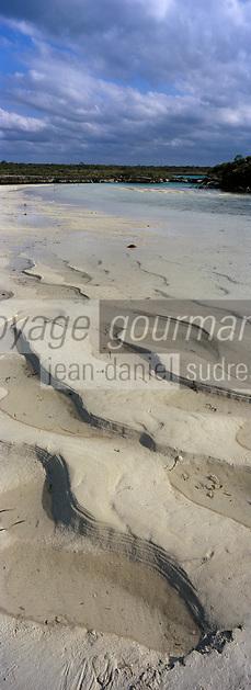 Iles Bahamas /Ile d'Andros/South Andros: la Mangrove et un trou bleu, puits profond dans le récif coralien