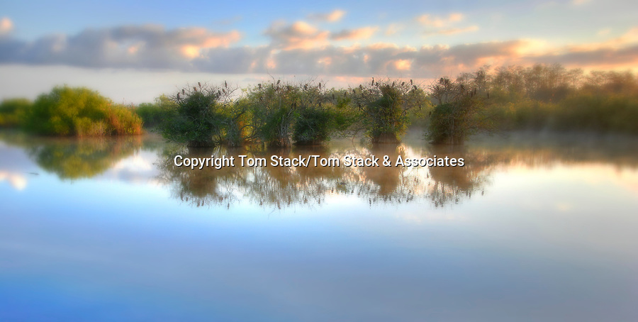 Everglades National Park, Anhinga Trail
