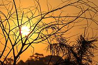 SAO PAULO, SP, 07 DE JUNHO 2013 - CLIMA TEMPO - Entardecer no Parque Ecologico  Tiete na regiao leste da cidade de Sao Paulo. FOTO; VANESSA CARVALHO - BRAZIL PHOTO PRESS.