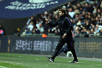 Tottenham Hotspur manager Mauricio Pochettino during Tottenham Hotspur vs Newcastle United, Premier League Football at Wembley Stadium on 2nd February 2019