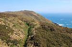 Coastal footpath and cliffs, Cape Clear Island, County Cork, Ireland, Irish Republic
