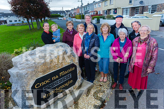 Knockmoyle estate winners of the Medium Estates  Tidy Towns award. Pictured ania Raymond, Jude Raymond, Josephine Griffin, Joan Walsh, Ger Donnellan, Aileen Miller, Mary McCarthy, Pat McCann, Angela Brolly, Leslie Hughes and Mary O'Brien