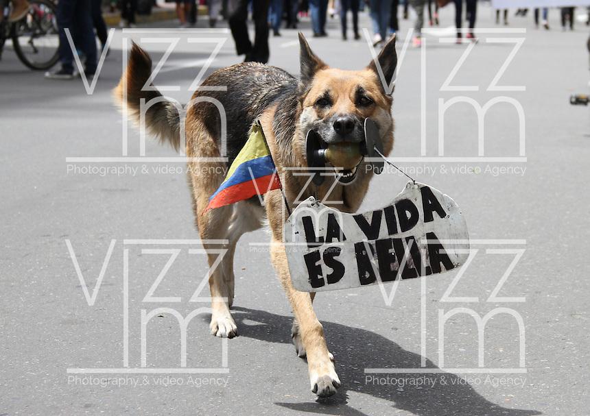 BOGOTA -COLOMBIA. 8-MARZO-2015.  Participantes de la marcha por la vida ./ Participants of the March for Life.. Photo: VizzorImage/ Felipe Caicedo / Staff