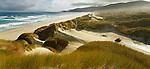Masons Bay on Stewart Island (Rakiura) National Park. New Zealand.