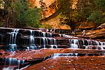 Subway canyon hike at Zion national park in Utah.