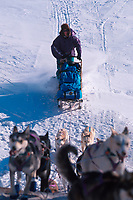 D Jonrowe on Trail Skwentna River Bank Iditarod 99 AK
