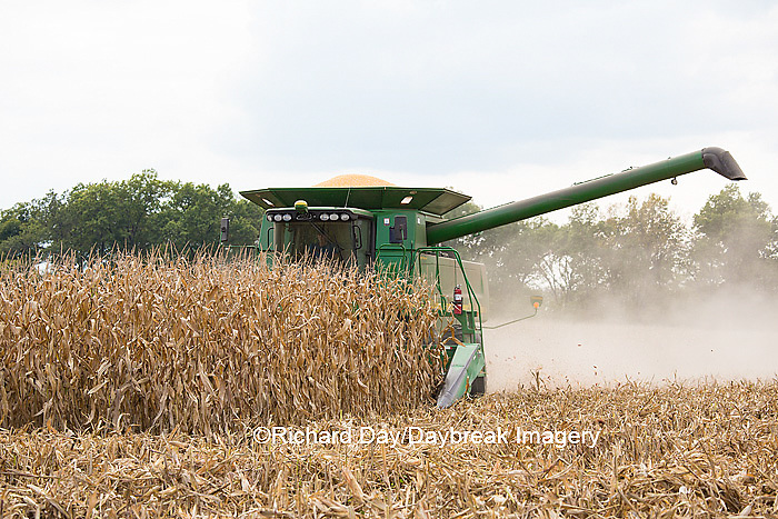 63801-07012 Farmer harvesting corn, Marion Co., IL