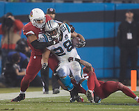 NFL Carolina Panthers vs Arizona Cardinals, January 3, 2015