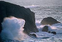 Europe/France/Bretagne/56/Morbihan/Belle-île/Env de Port-Donnant: La côte sauvage