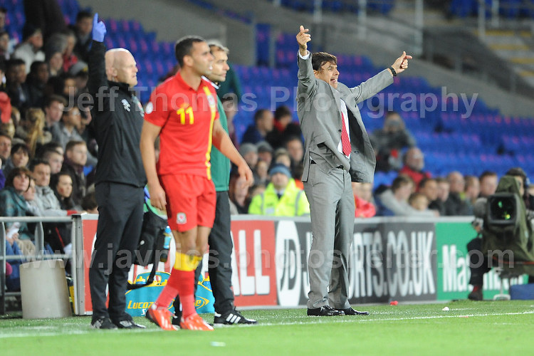 Cardiff City Stadium, Friday 11th Oct 2013. Wales manager Chris Coleman attempts to get the attention of the referee during the Wales v Macedonia FIFA World Cup 2014 Qualifier match at Cardiff City Stadium, Cardiff, Friday 11th Oct 2014. All images are the copyright of Jeff Thomas Photography-07837 386244-www.jaypics.photoshelter.com