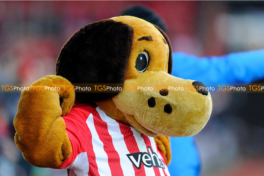 Sammy Sait the Southampton mascot warms up- Southampton vs Arsenal - Barclays Premier League Football at St Mary's Stadium, Southampton, Hampshire - 01/01/15 - MANDATORY CREDIT: Denis Murphy/TGSPHOTO - Self billing applies where appropriate - contact@tgsphoto.co.uk - NO UNPAID USE