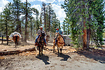 Dad and Dave heading out to the trail head. Sierra National Forest, on the western slope of the Sierra Nevada, California
