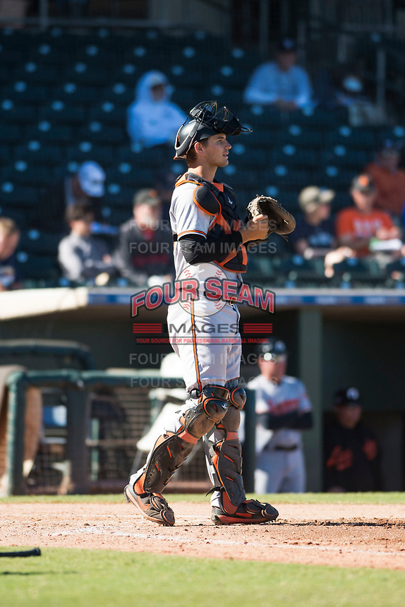 Glendale Desert Dogs catcher Martin Cervenka (25), of the Baltimore Orioles organization, during an Arizona Fall League game against the Surprise Saguaros at Surprise Stadium on November 13, 2018 in Surprise, Arizona. Surprise defeated Glendale 9-2. (Zachary Lucy/Four Seam Images)