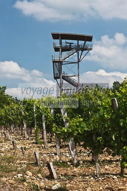 Europe/France/Aquitaine/24/Dordogne/Florimont Gaumier: Les vignoble du Vin de Domme à Moncalou, et la tour panoramique