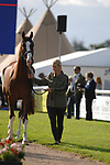 Stamford, Lincolnshire, United Kingdom, 4th September 2019, Zara Tindall (GB) & Class Affair during the 1st Horse Inspection of the 2019 Land Rover Burghley Horse Trials, Credit: Jonathan Clarke/JPC Images