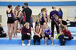 Veterans Championships 2014