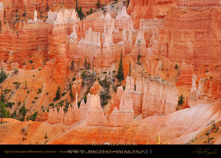 Queen's Garden Hoodoos at Sunset, Sunrise Point, Bryce Canyon National Park, Utah