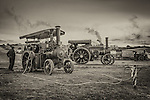 The Great Dorset Steam Fair 2014