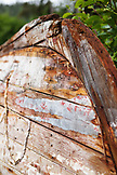 USA, Alaska, Homer, an old worn wooden fishing boat lies upside down in the grass, Halibut Cove