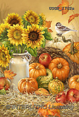 Dona Gelsinger, STILL LIFE STILLEBEN, NATURALEZA MORTA, paintings+++++,USGE1702A,#i#, EVERYDAY ,harvest,sunflowers,pumkins