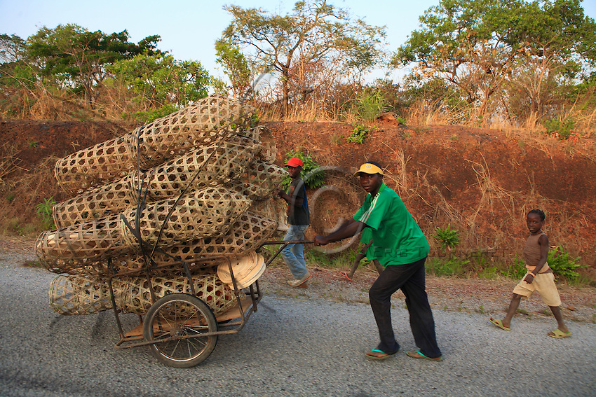 A hive maker brings to the village cylindrical hives that will be covered in palm leaves to enclose them.