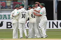Josh Tongue of Worcestershire celebrates with his team mates after taking the wicket of Ravi Bopara during Worcestershire CCC vs Essex CCC, Specsavers County Championship Division 1 Cricket at Blackfinch New Road on 11th May 2018