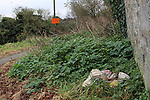 Rubbish Dumped near 101 steps 4/1/12..Photo NEWSFILE/Jenny Matthews..(Photo credit should read Jenny Matthews/NEWSFILE)