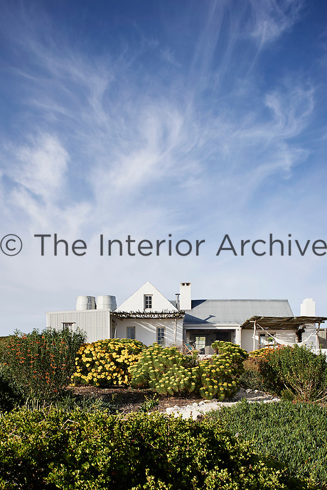 The exterior of a white-washed beach house with a garden filled with native plants.