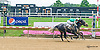 Royal L. S. winning at Delaware Park on 7/6/15