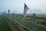 Farmland with the American flag attached to fence with early morning fog