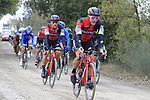 The peloton including Greg Van Avermaet (BEL) BMC Racing Team on gravel sector 3 Radi during the 2017 Strade Bianche running 175km from Siena to Siena, Tuscany, Italy 4th March 2017.<br /> Picture: Eoin Clarke | Newsfile<br /> <br /> <br /> All photos usage must carry mandatory copyright credit (&copy; Newsfile | Eoin Clarke)