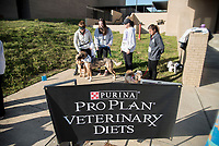 Alpha Psi 5k Purina Dog Dash 2018