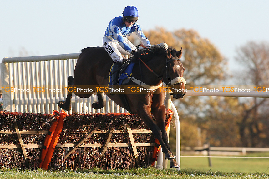 Baharat ridden by Dougie Costello in jumping action during the Wensum Handicap Hurdle at Fakenham Racecourse, Norfolk - 12/12/11 - MANDATORY CREDIT: Gavin Ellis/TGSPHOTO - Self billing applies where appropriate - 0845 094 6026 - contact@tgsphoto.co.uk - NO UNPAID USE.