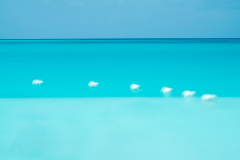 Bouys in tropical waters. Turks and Caicos.