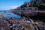 Alaska, Chichagof Island, Gulf of Alaska, coastal shoreline, intertidal,