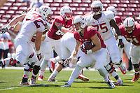 Stanford, CA -- April 11, 2015: Stanford Football's Cardinal & White Spring Game at Stanford Stadium.